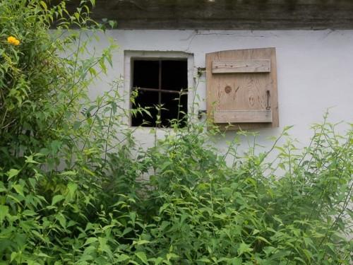 Praxisworkshop Fotowalk Olympus Nürnberg