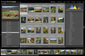Lightroom-Online-Training